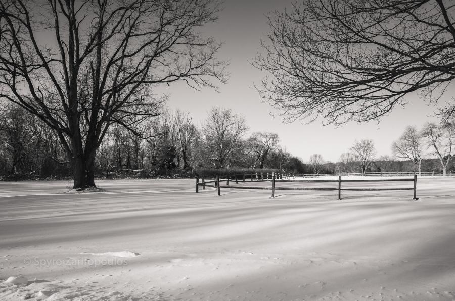 Muttontown Preserve, NY
